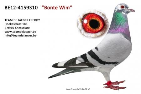 BONTE WIM